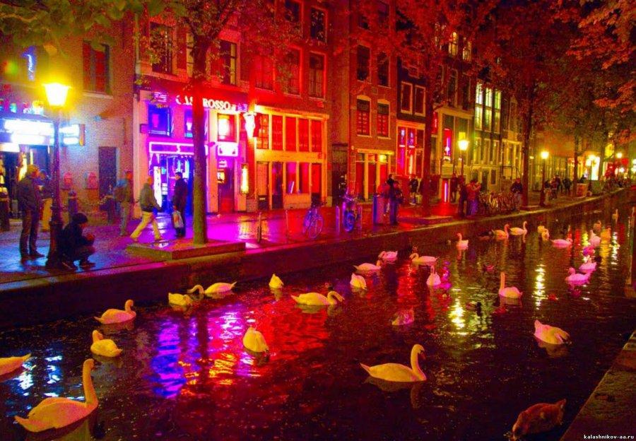 Голландки Фото голых голландок и секс туризм в Голландии